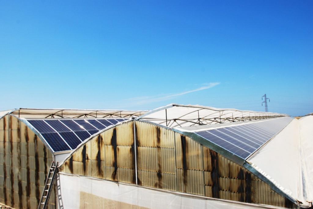 100 kWp fotovoltaico su serre Azienda Agricola Ortolevante